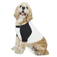 Dog Poly/Cotton Three-Quarter Sleeve Raglan Tee Thumbnail